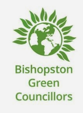 Green councillors